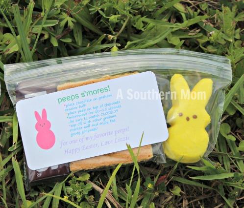 peep s'mores bunny