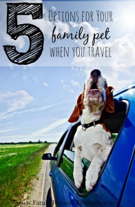 5 Options for Your Family Pet When You Travel
