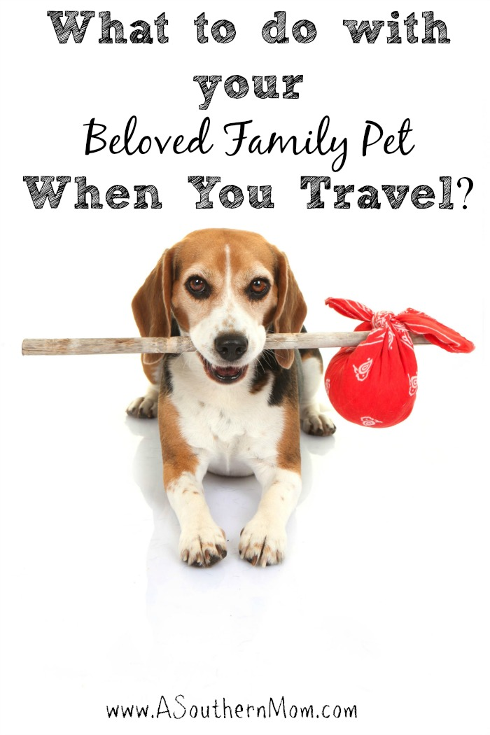 travel with family pet