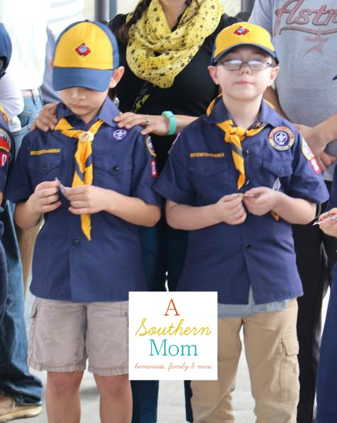 Cub Scouts Awards